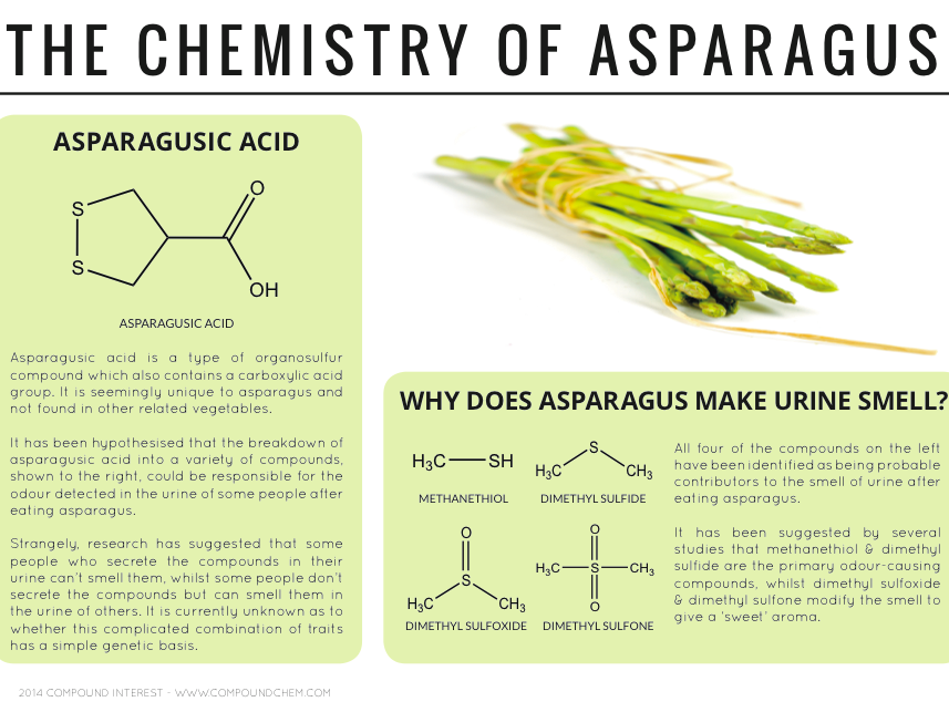 The chemistry of asparagus. Image: Courtesy of Compound Interest