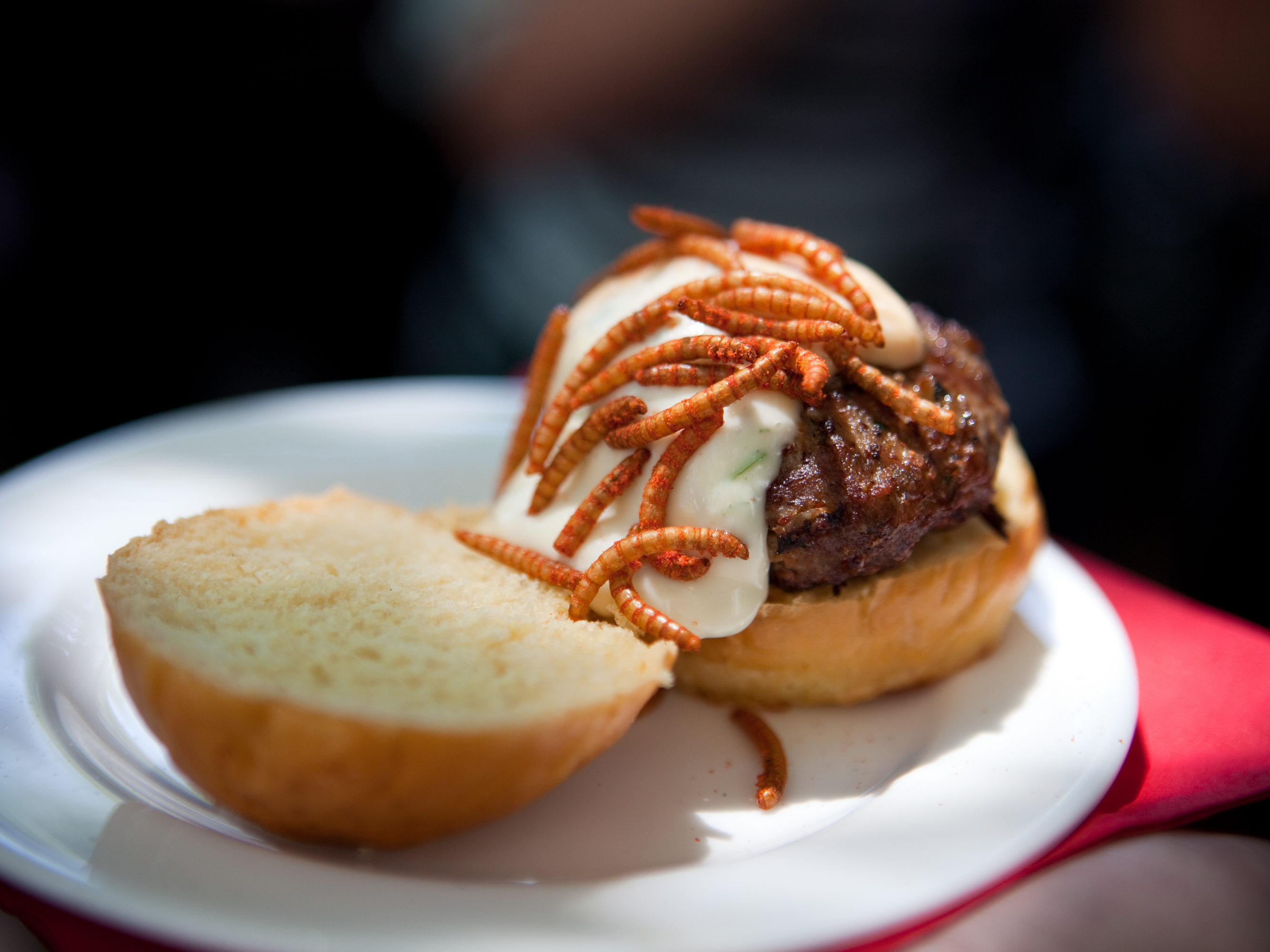 At 'Pestaurant,' Grasshopper Burgers Win Over Eaters Who Say 'Yuck'