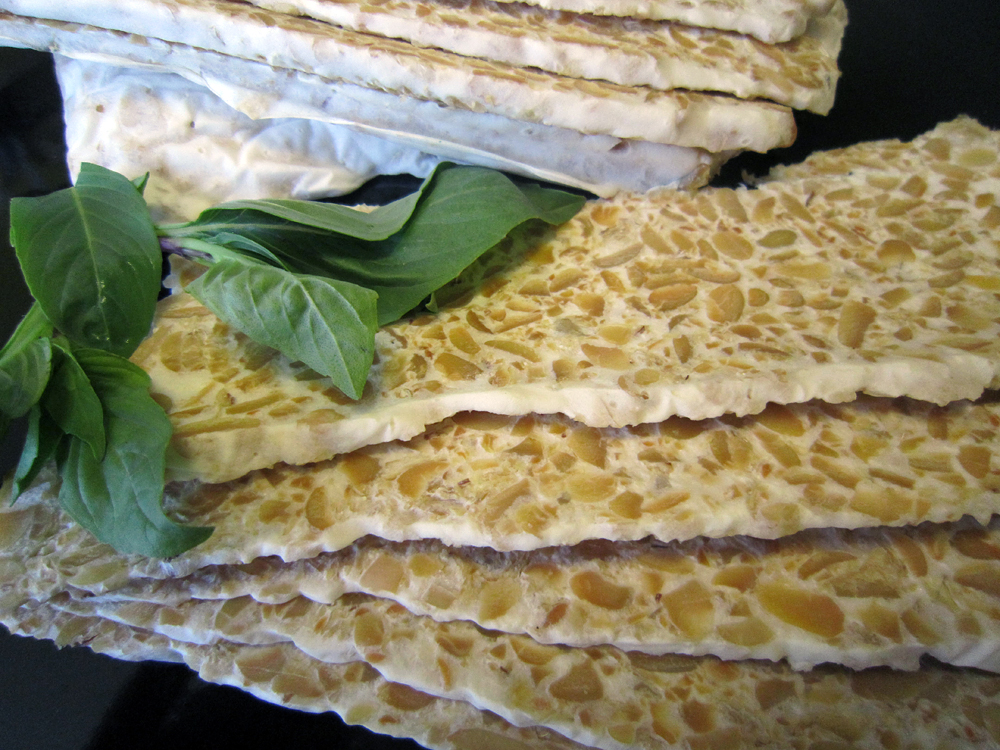 Sliced rhizocali tempeh can look like a quartz countertop. Photo: Alix Wall
