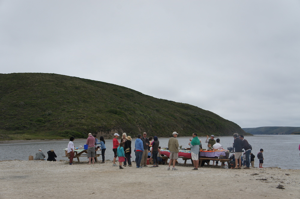 Families and friends gather by the water at Drakes Bay to enjoy oysters together. Photo: Angela Johnston