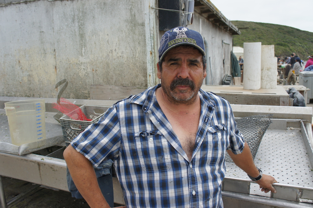 Jorge Mata has been working at Drakes Bay since 1984. Photo: Angela Johnston