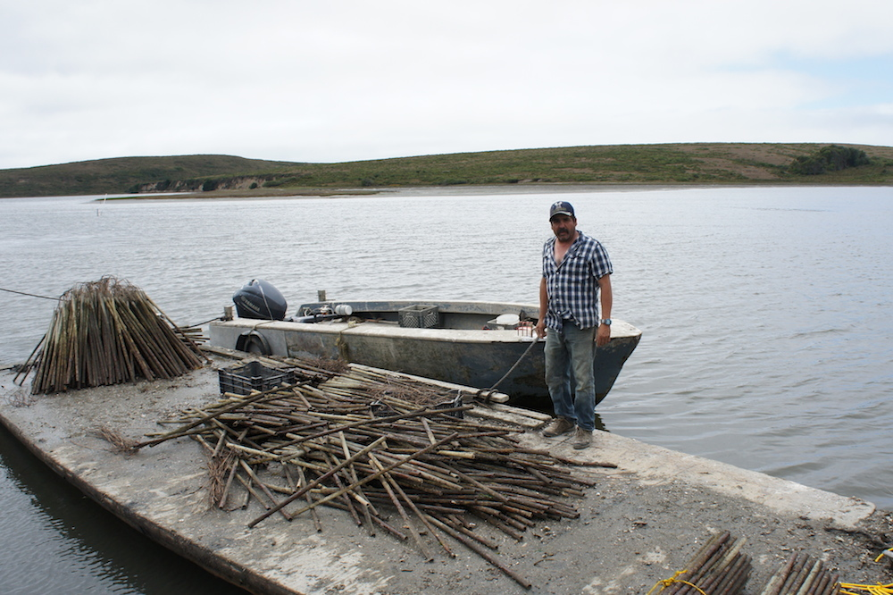 Jorge Mata stands next to one of the boats he uses to go check on the oysters out in the estero. He lives on the farm with the other workers, and his daughter was born and raised on the farm. Photo: Angela Johnston