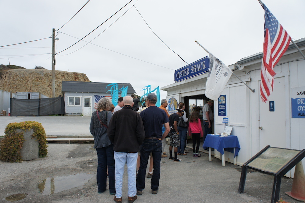 Visitors line up to buy bags oysters at the shack. The shack, along with the cannery, is set to close on July 31. Photo: Angela Johnston
