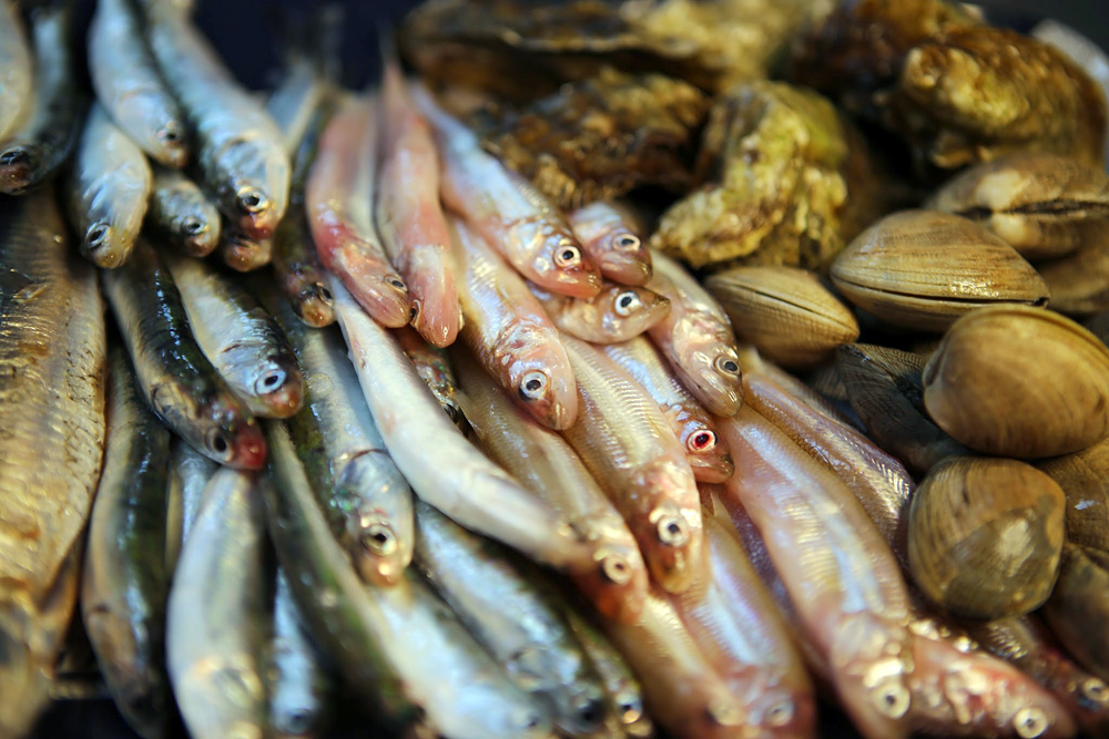 Anchovies, night smelt and clams are a few of the offerings from San Francisco-based community supported fishery Sea Forager. Photo courtesy: Sea Forager