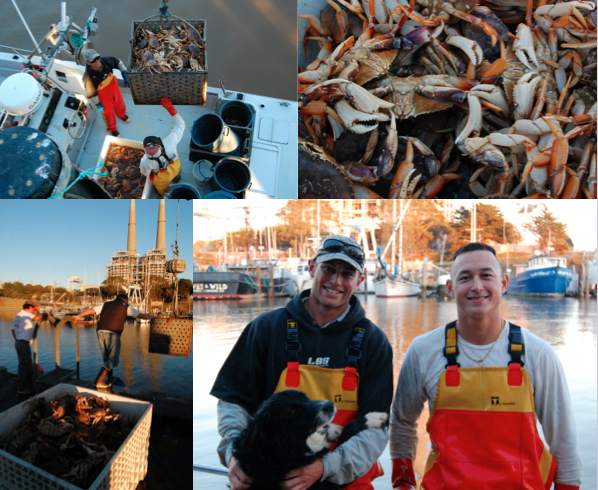 Fishermen Calder Deyerle and Justin Riddleberger provide caught Dungeness crab to Local Catch Monterey Bay, a community supported fishery in Monterey, California. Photo: Oren Frey