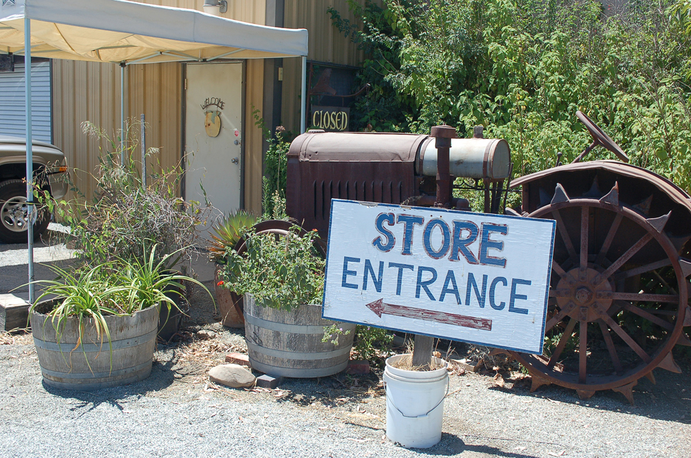 The retail store at Andy's Orchard in Morgan Hill has a huge assortment of currently-ripe stone fruit as well as vegetables grown on the ranch and by neighbors. Photo: Susan Hathaway