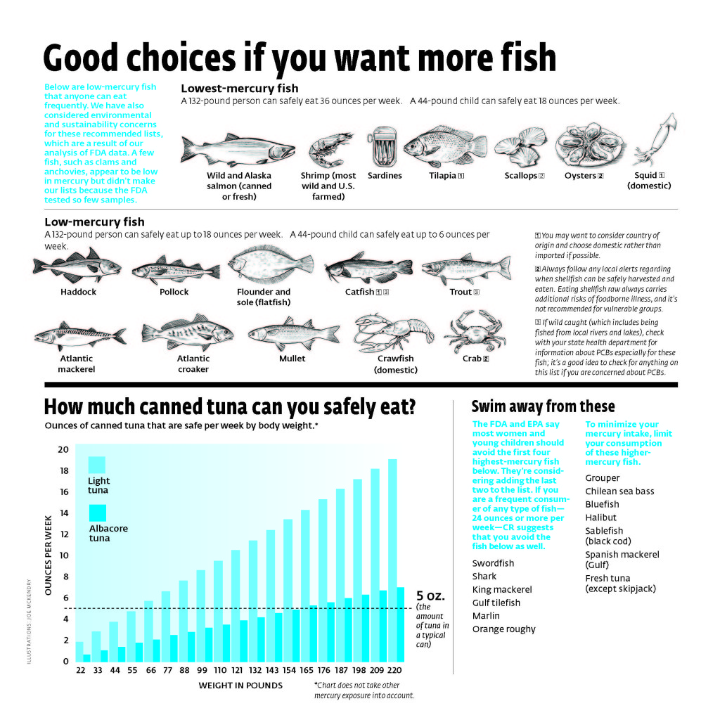 Good Choices If You Want More Fish. Illustrations: Joe McKendry