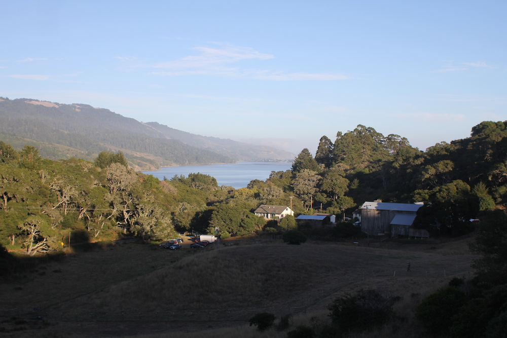 The view of Bolinas Lagoon from the top of the Mann Family Farm. Photo: Angela Johnston
