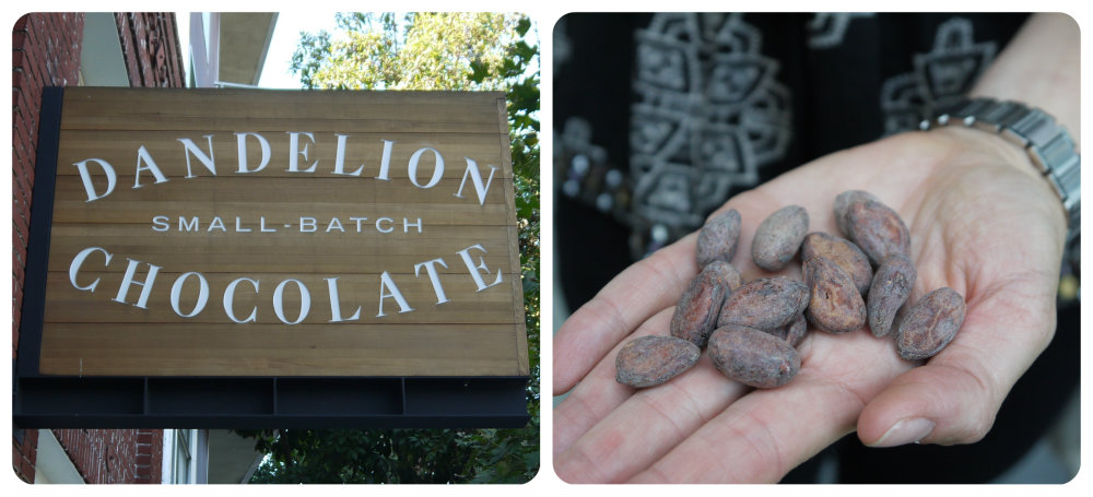 Dandelion cafe and cocoa beans. photo: Lila Volkas