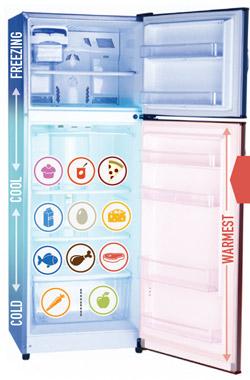 NRDC refrigerator infographic