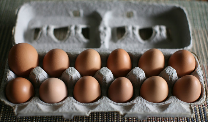 Free-range eggs from Pennypack Farm in Pennsylvania. Photo: Christopher Paquette/Flickr