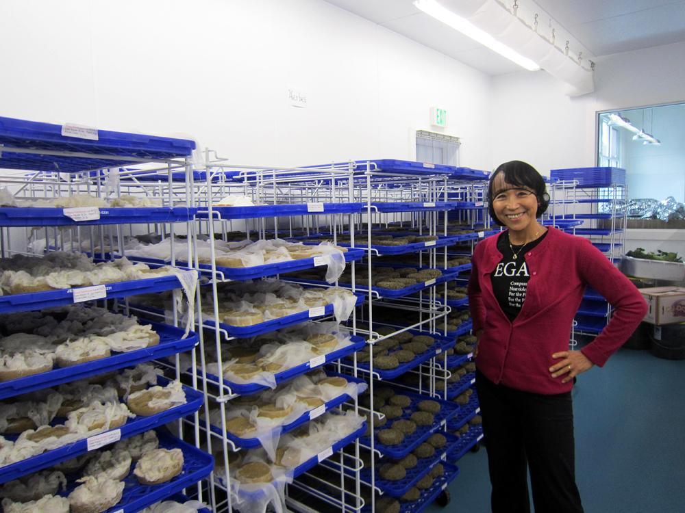 Miyoko Shinner stands in her aging room. Photo: Alix Wall