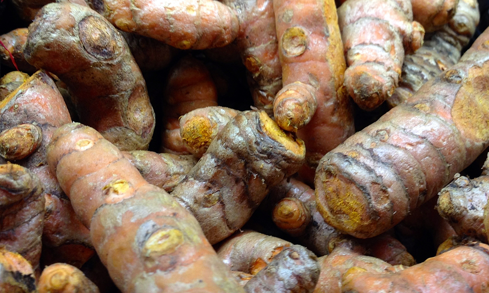 Fresh Turmeric. Photo: Lisa Landers