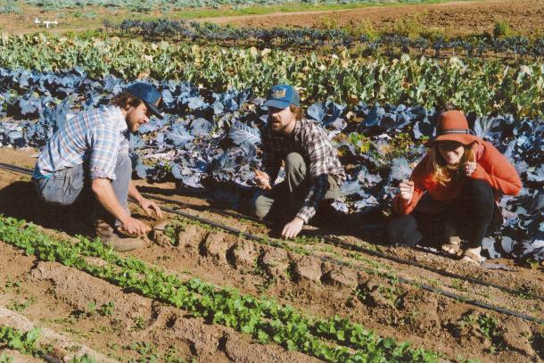 How Will We Grow New Farmers?