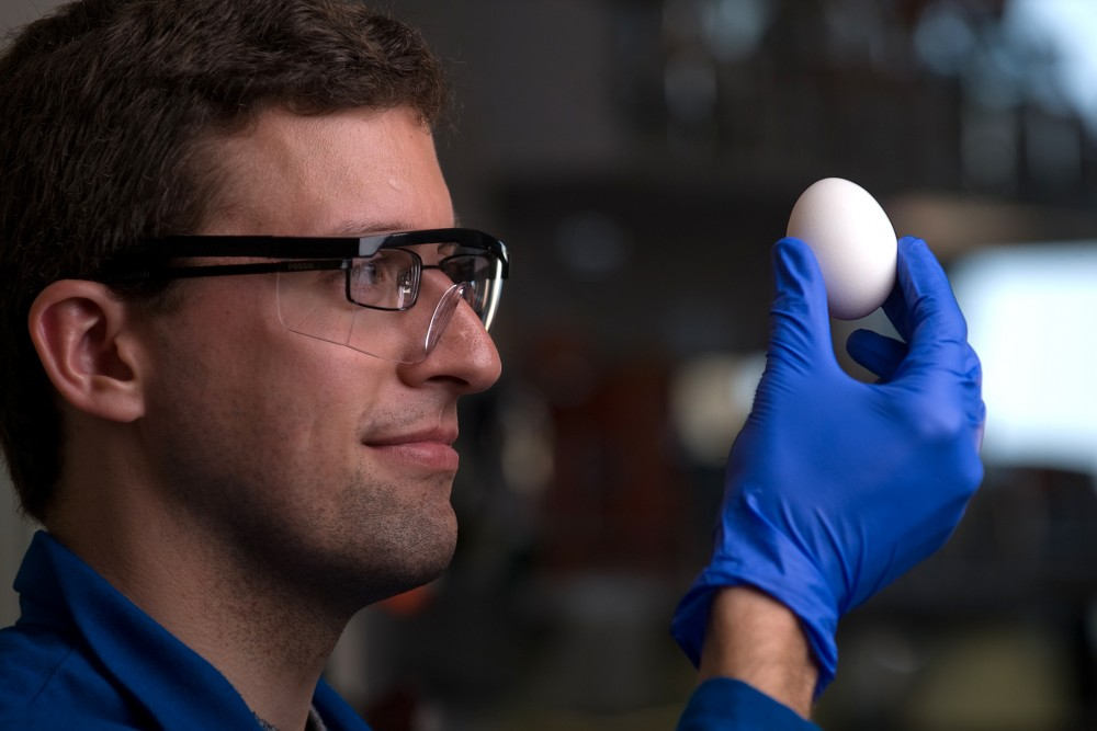 Professor Greg Weiss of the University of California, Irvine is one of the researchers who has developed a way of unboiling a egg. Photo: Steve Zylius/UC Irvine Communications