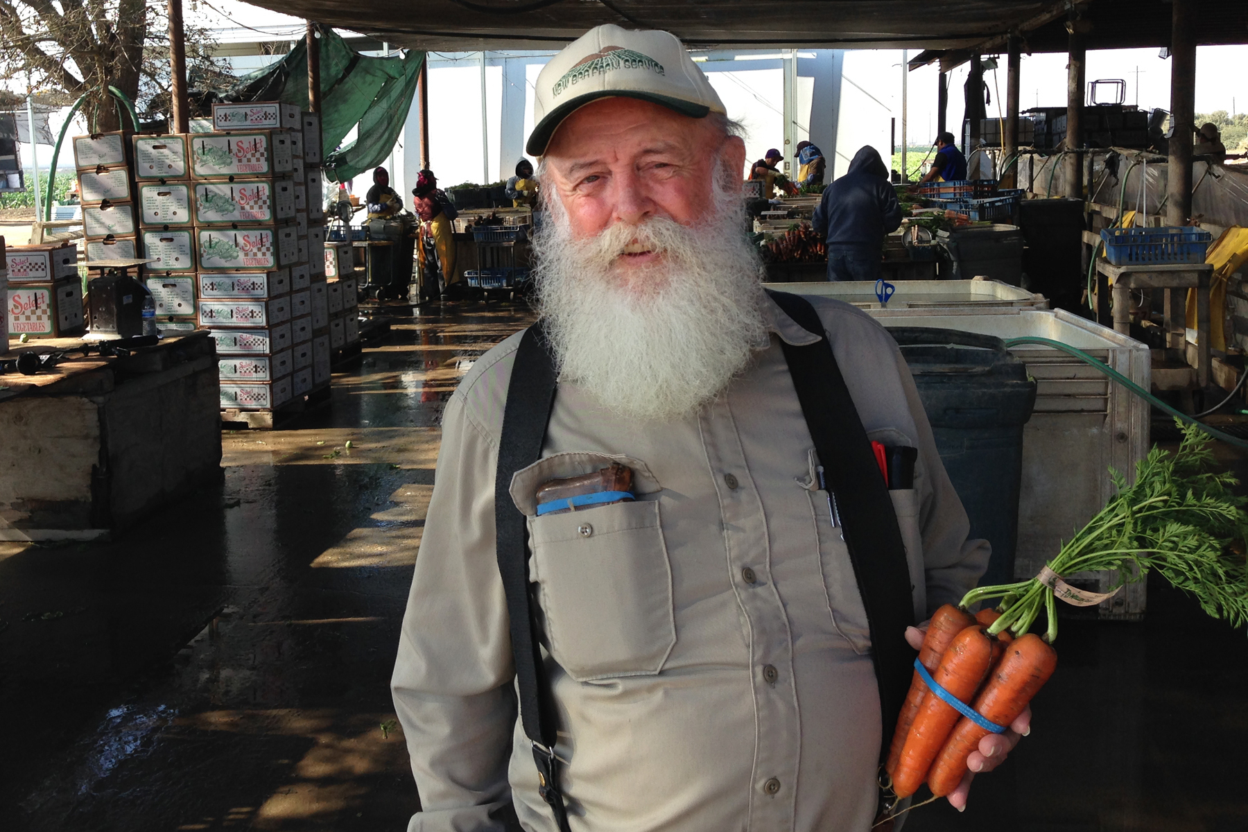 Tom Willey grows a big variety of organic vegetables near Madera, Calif., and employs about 50 people year-round. Photo: Dan Charles/NPR