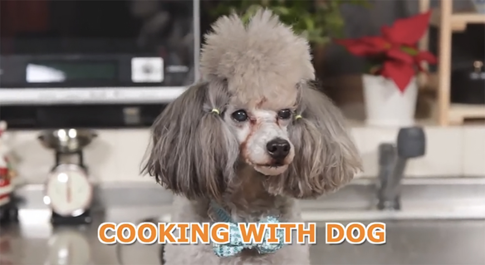 Cooking with dog2