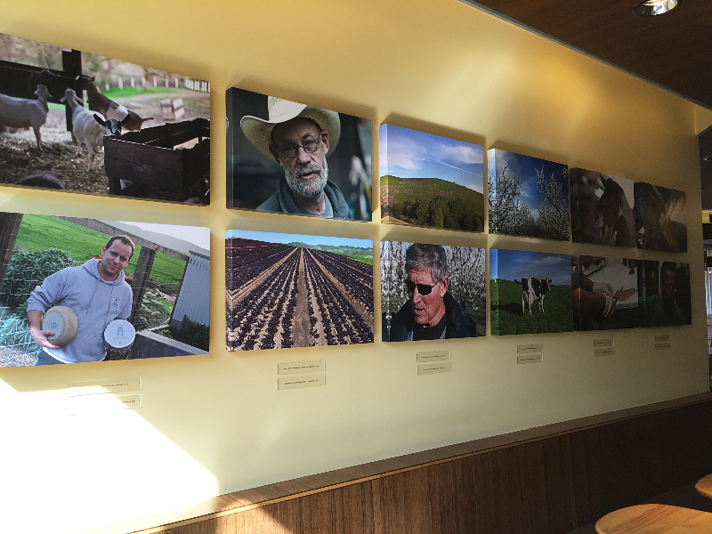 Tender Greens in Walnut Creek displays large photos of farmers on its walls; the same farmers who grow much of the food they serve. Photo: Alix Wall