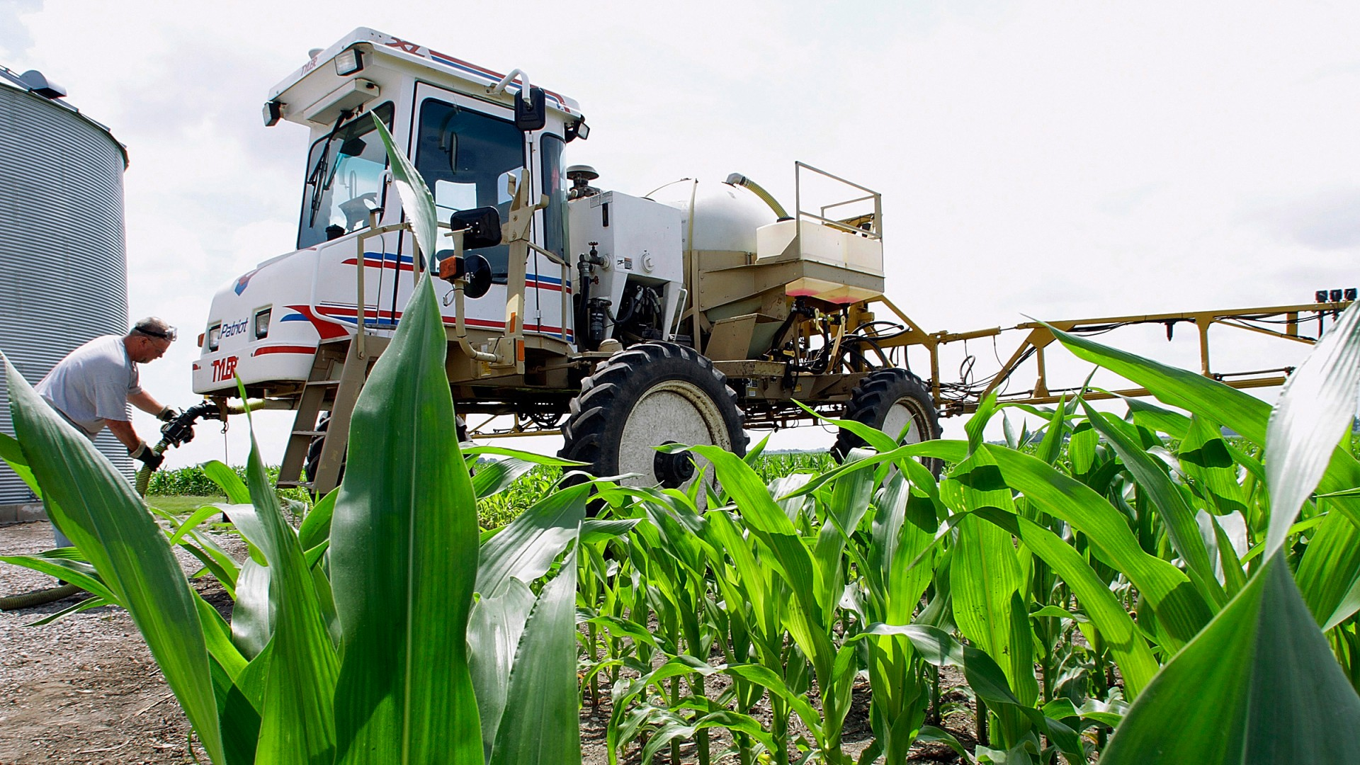 Central Illinois corn farmer Jerry McCulley refills his sprayer with the weedkiller glyphosate on a farm near Auburn, Ill. A new assessment of the chemical finds that the (uncertain) risks mainly affect the people who work with it or who come in direct contact with areas where it's applied. Photo: Seth Perlman/AP