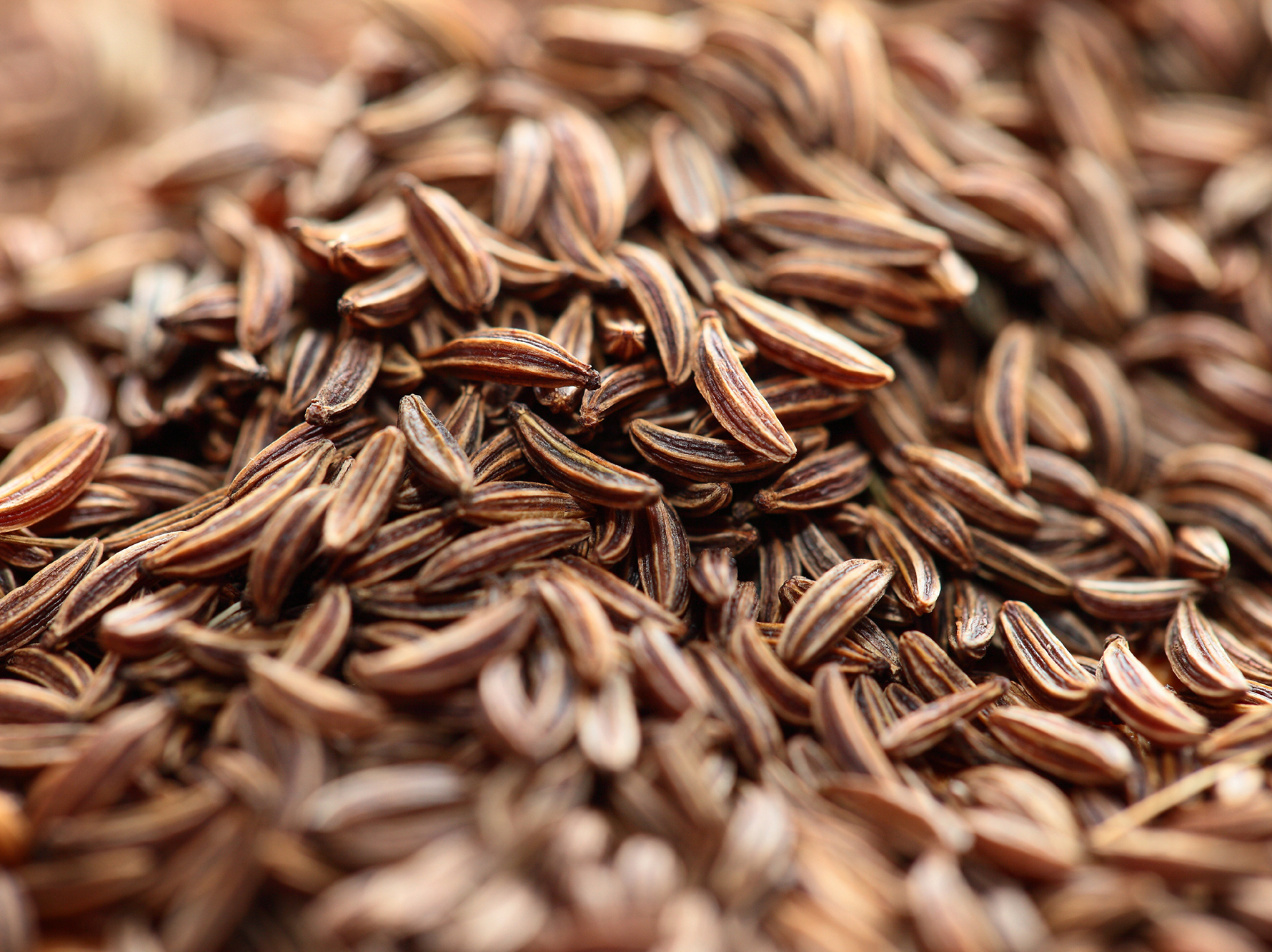 The cuisines of the classical world made use of cumin both as a flavoring and a drug. Photo: iStockphoto