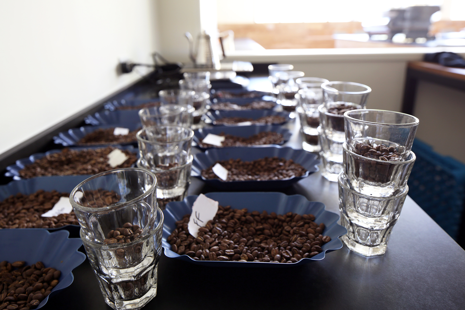The cupping lab.