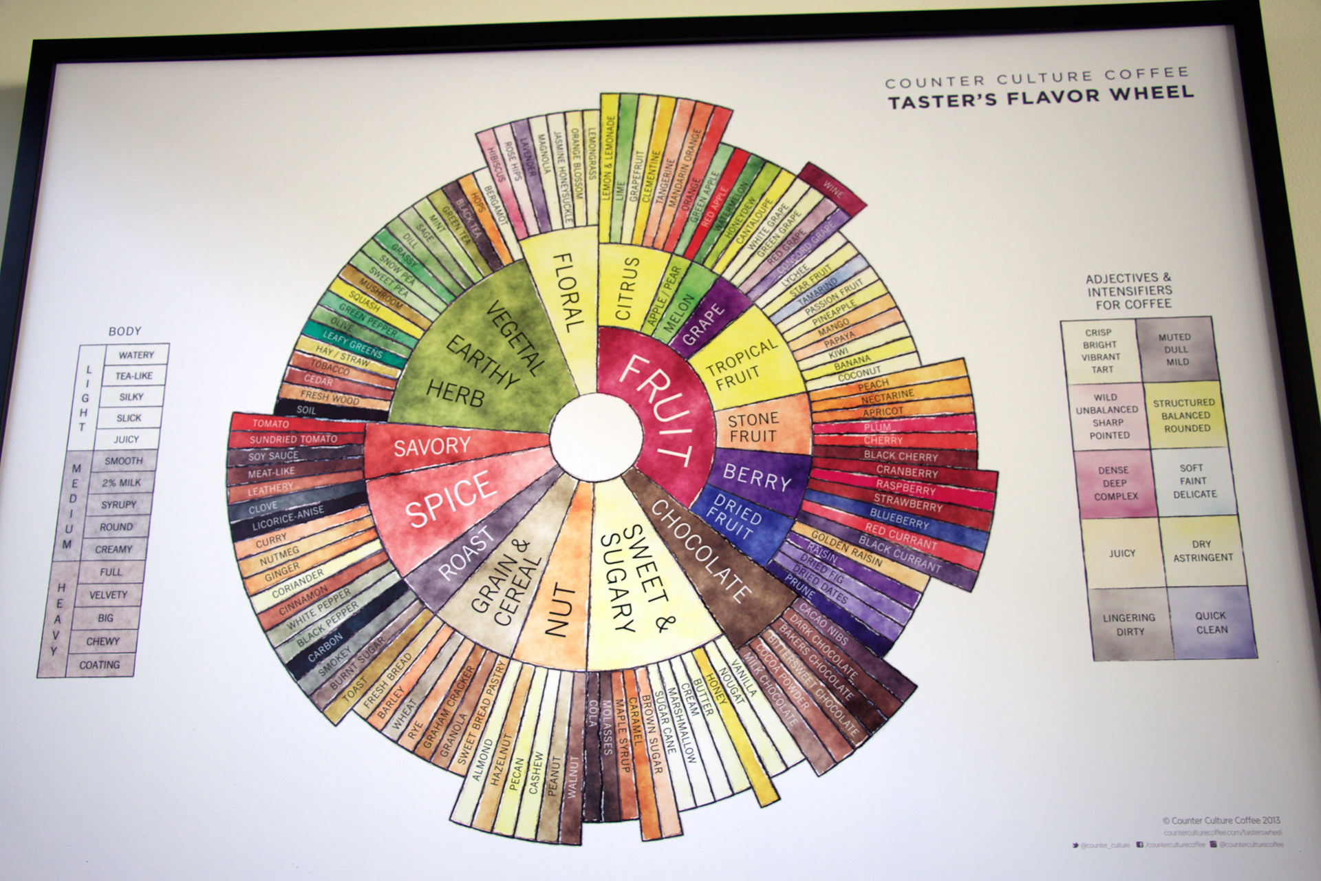 The taster's flavor wheel, developed by Tim Hill, buyer and quality manager.
