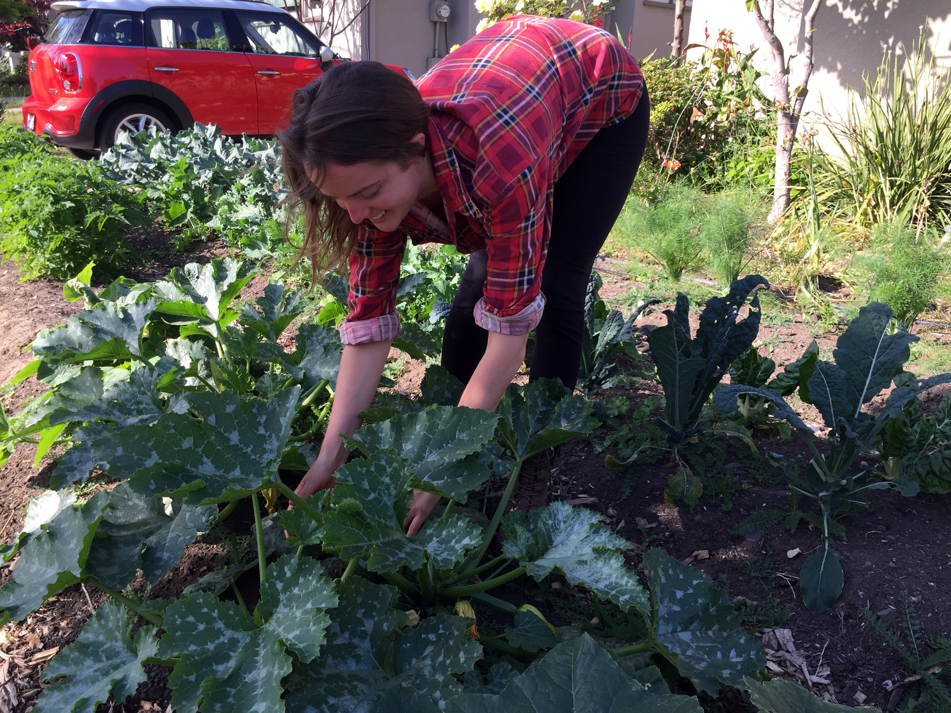 Mary Lemmer tends to a garden at a client's home in Oakland.