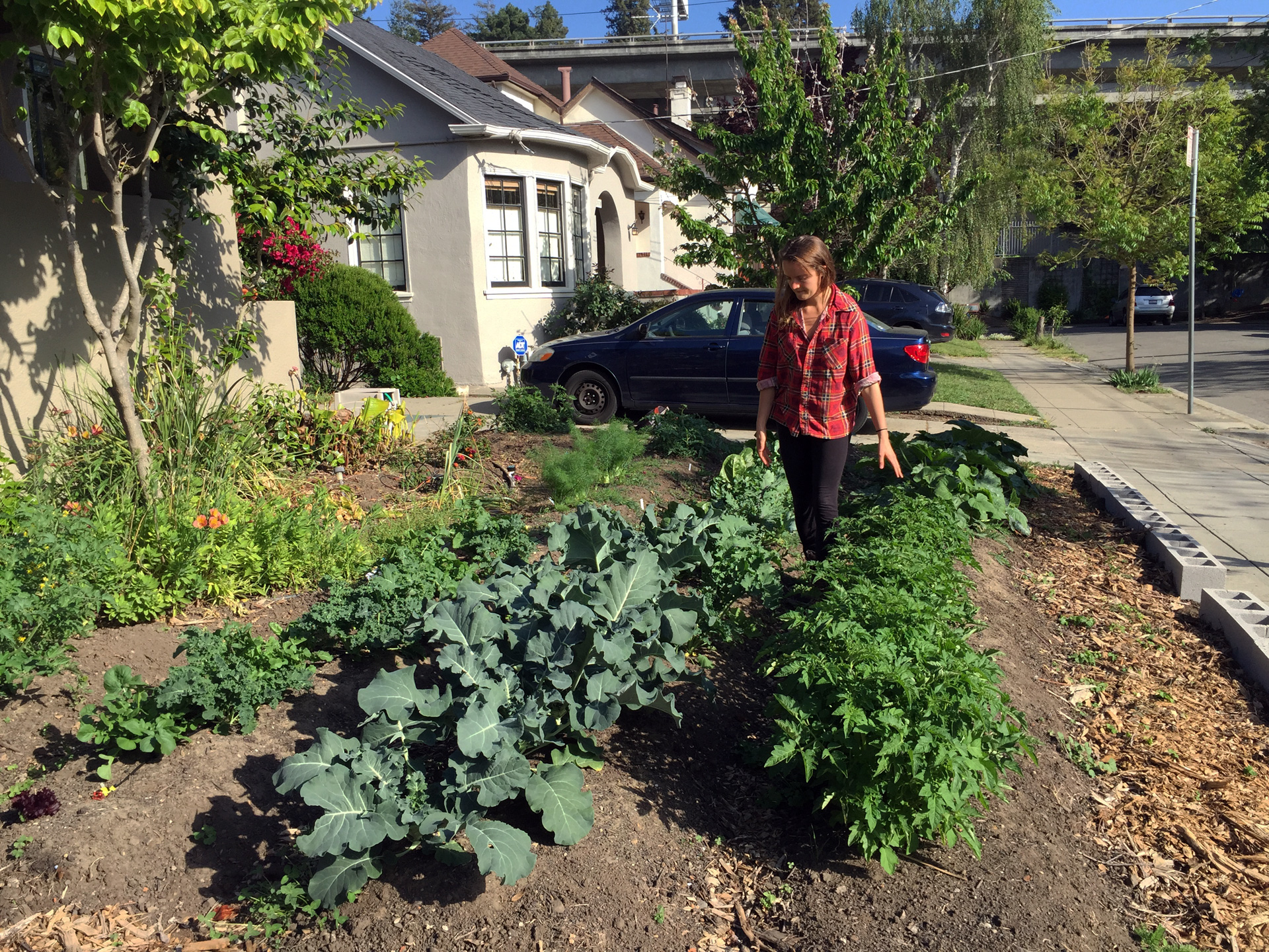 Mary Lemmer tends to a client's mini-farm.