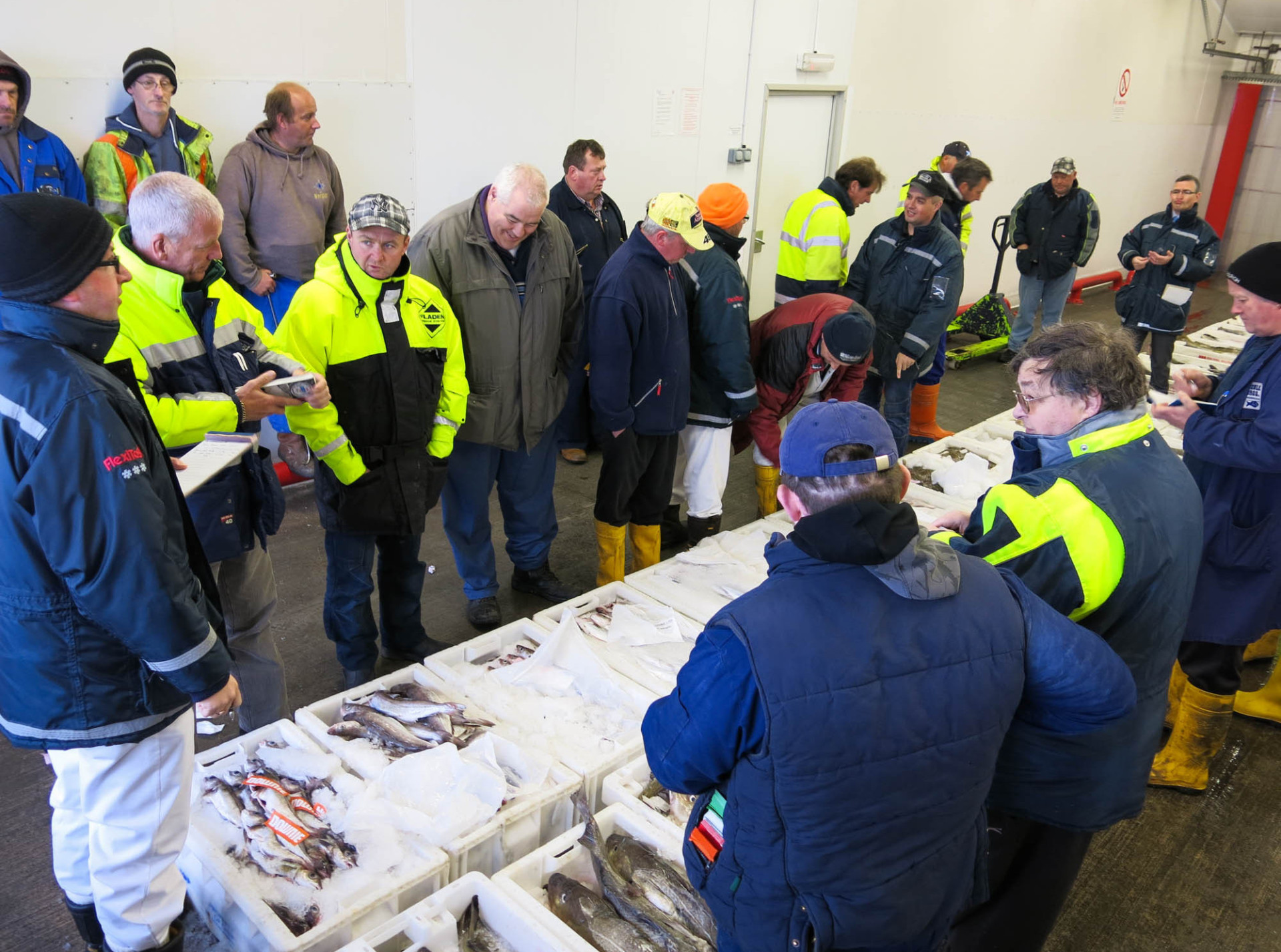 Most of the buyers and sellers at the Fraserburgh fish auction come from generations of fishermen.