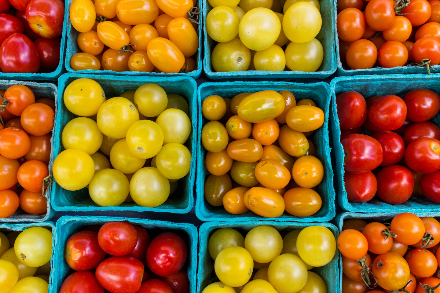 Communities Get A Lift As Local Food Sales Surge To $11 Billion A Year