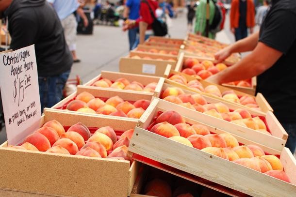Bella Viva Orchards' Certified Organic Angelus Peaches