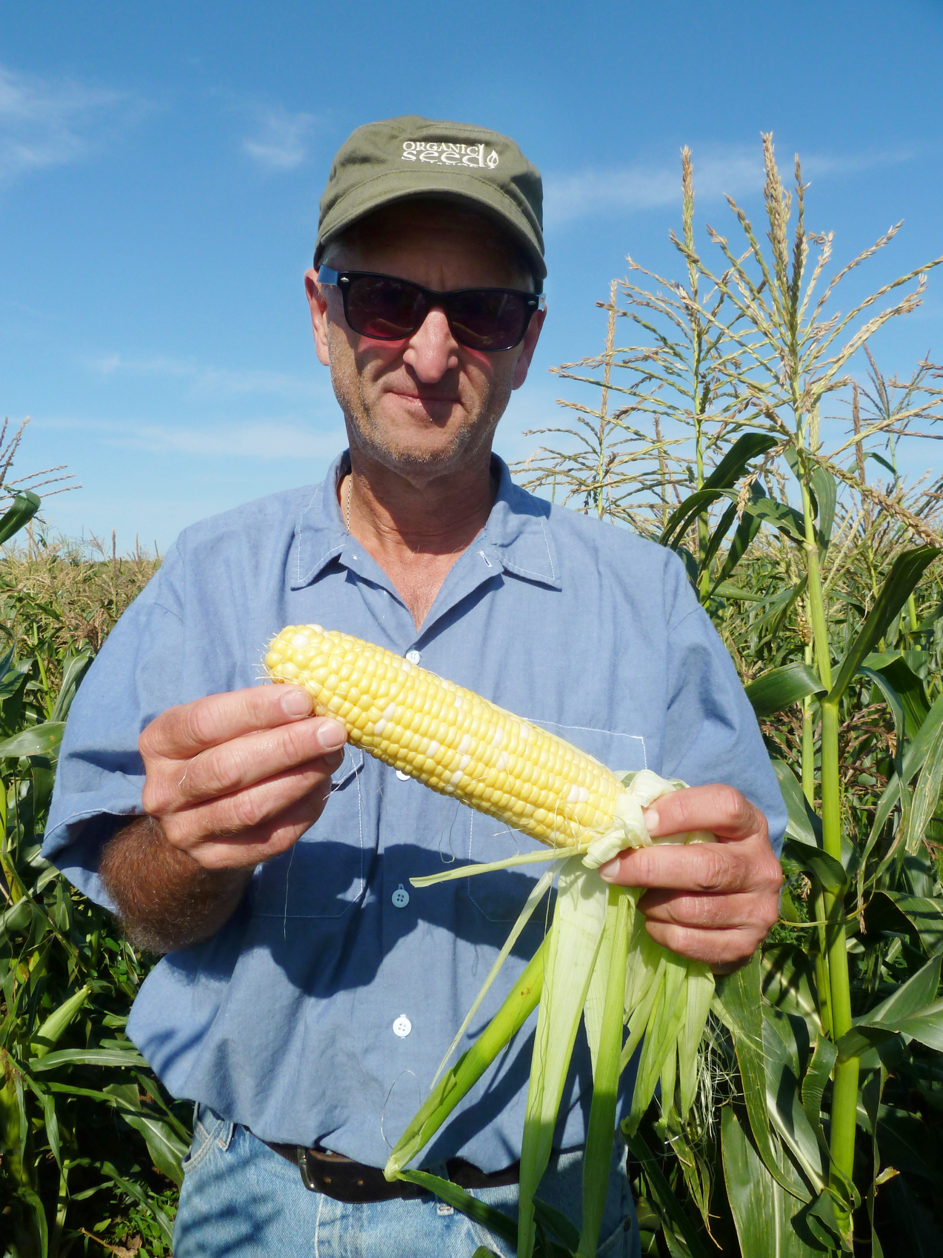 "Bill Tracy, who breeds organic versions of sweet corn in Wisconsin, recently released one called ""Who Gets Kissed."""