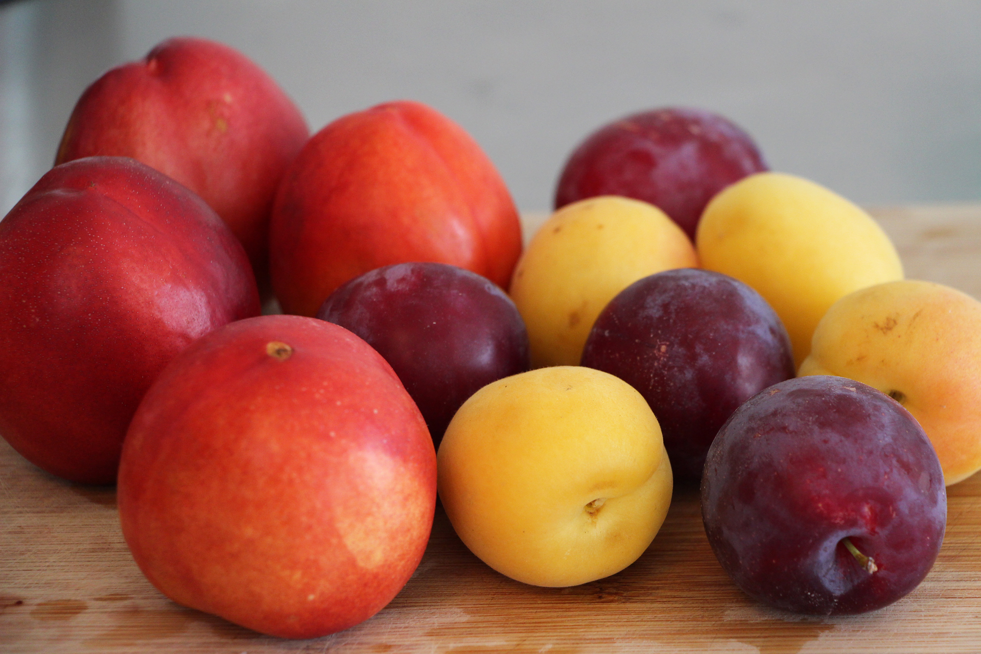 Nectarines, plums and apricots for the Summer Stone Fruit Salad
