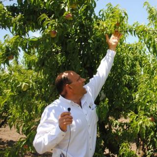 Victor Martino of Bella Viva Orchards