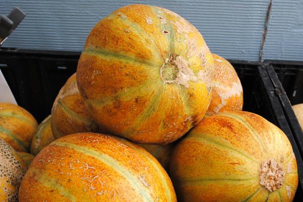 Ha'Ogen melons