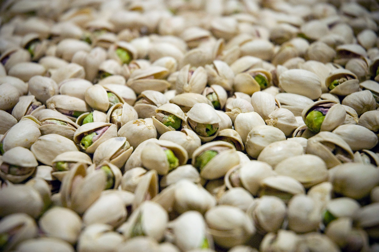 Oh nuts why california s pistachio trees are shooting