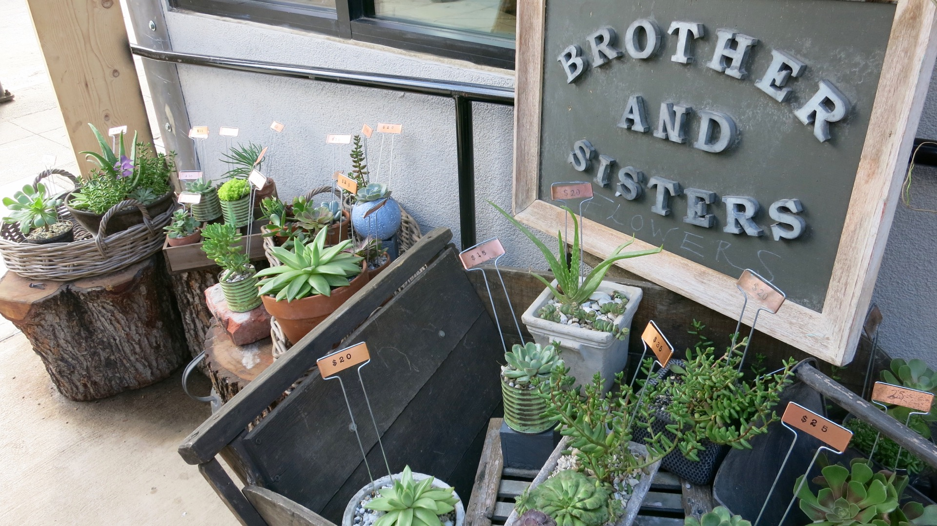 Brother and Sisters' is the cozy flower shop located within the market.