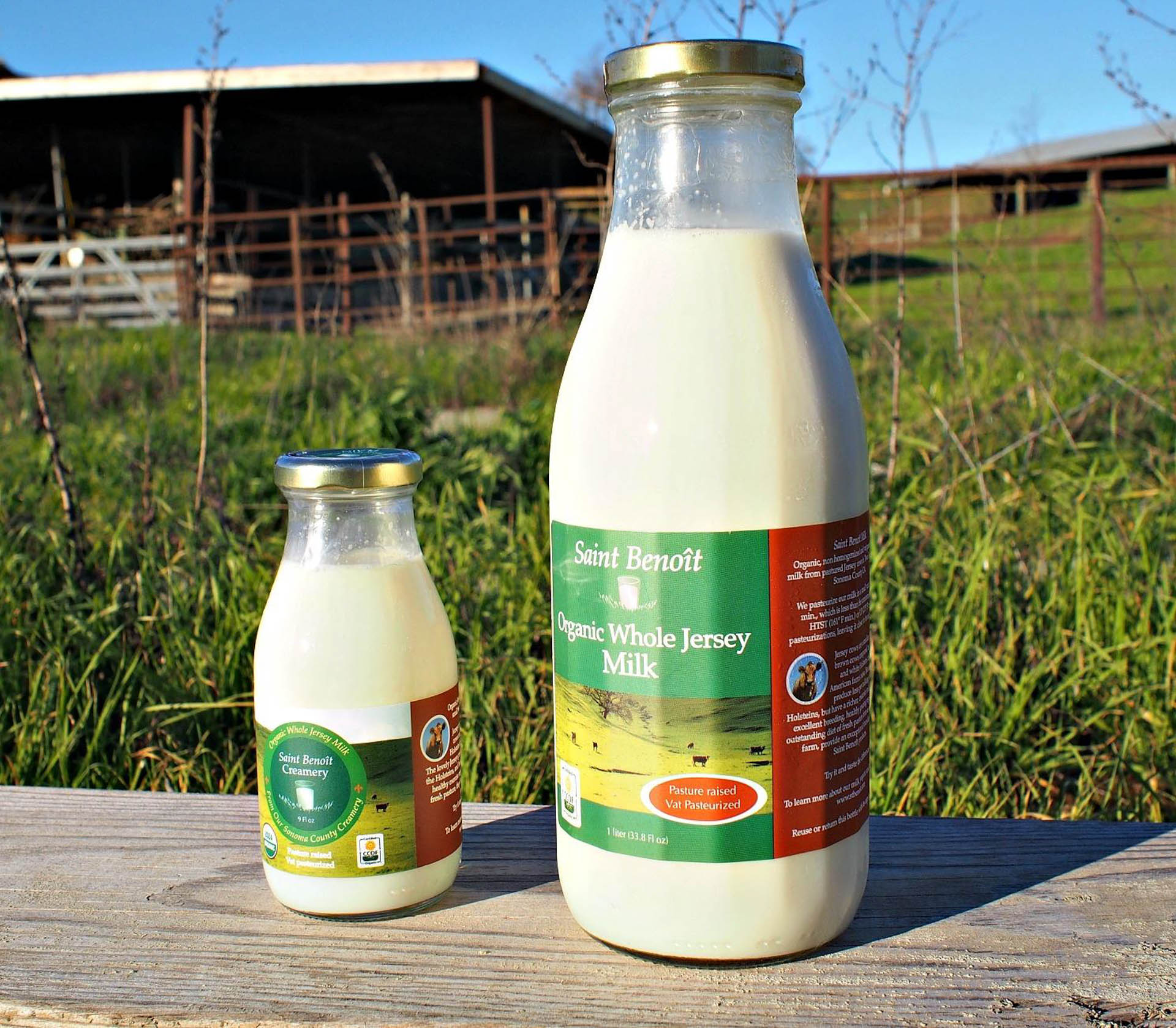 Saint Benoit's milk is sold in glass jars.