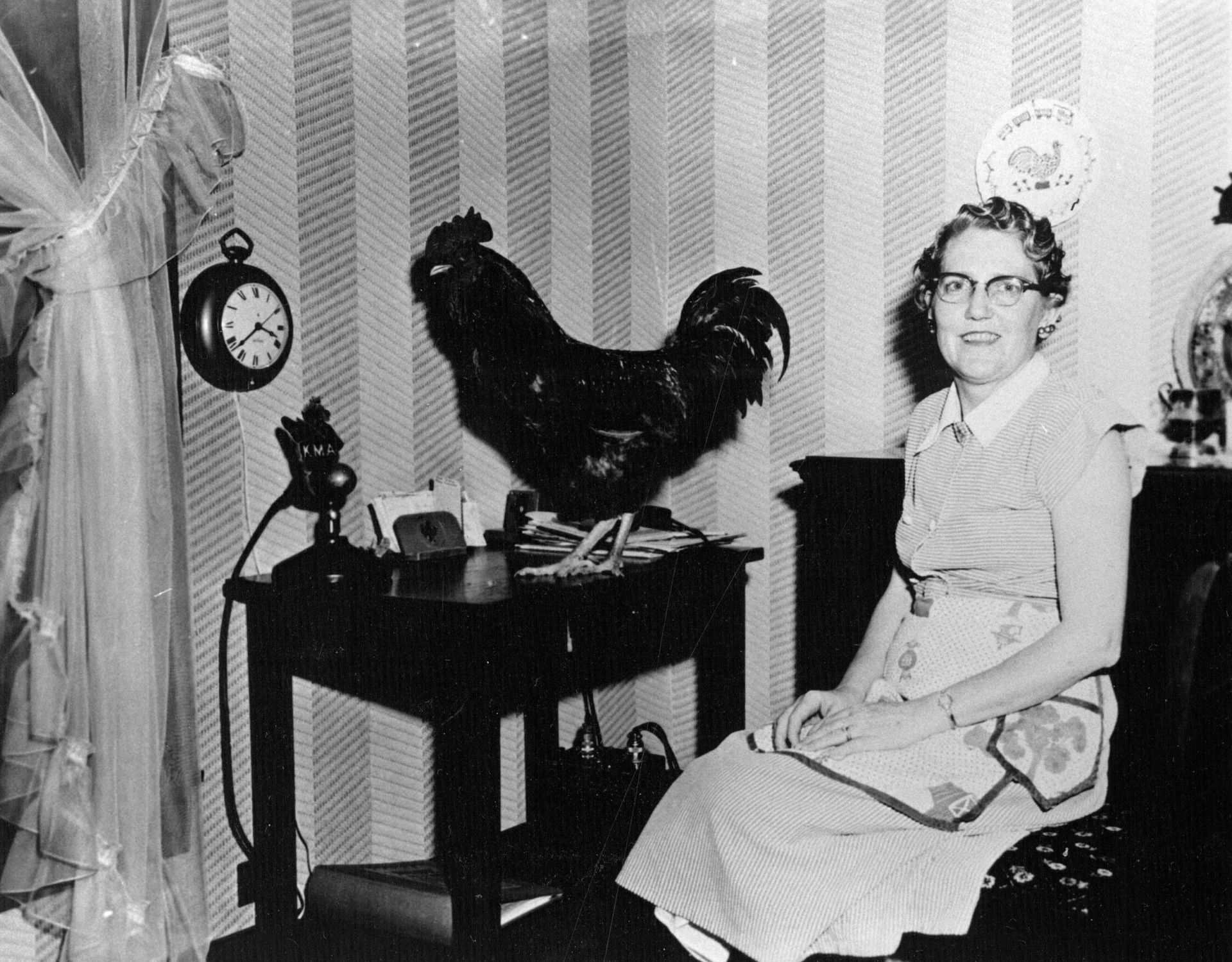 Florence Falk and a rooster are pictured in the 1950s at a table in the dining room where broadcasts of The Farmer's Wife originated.