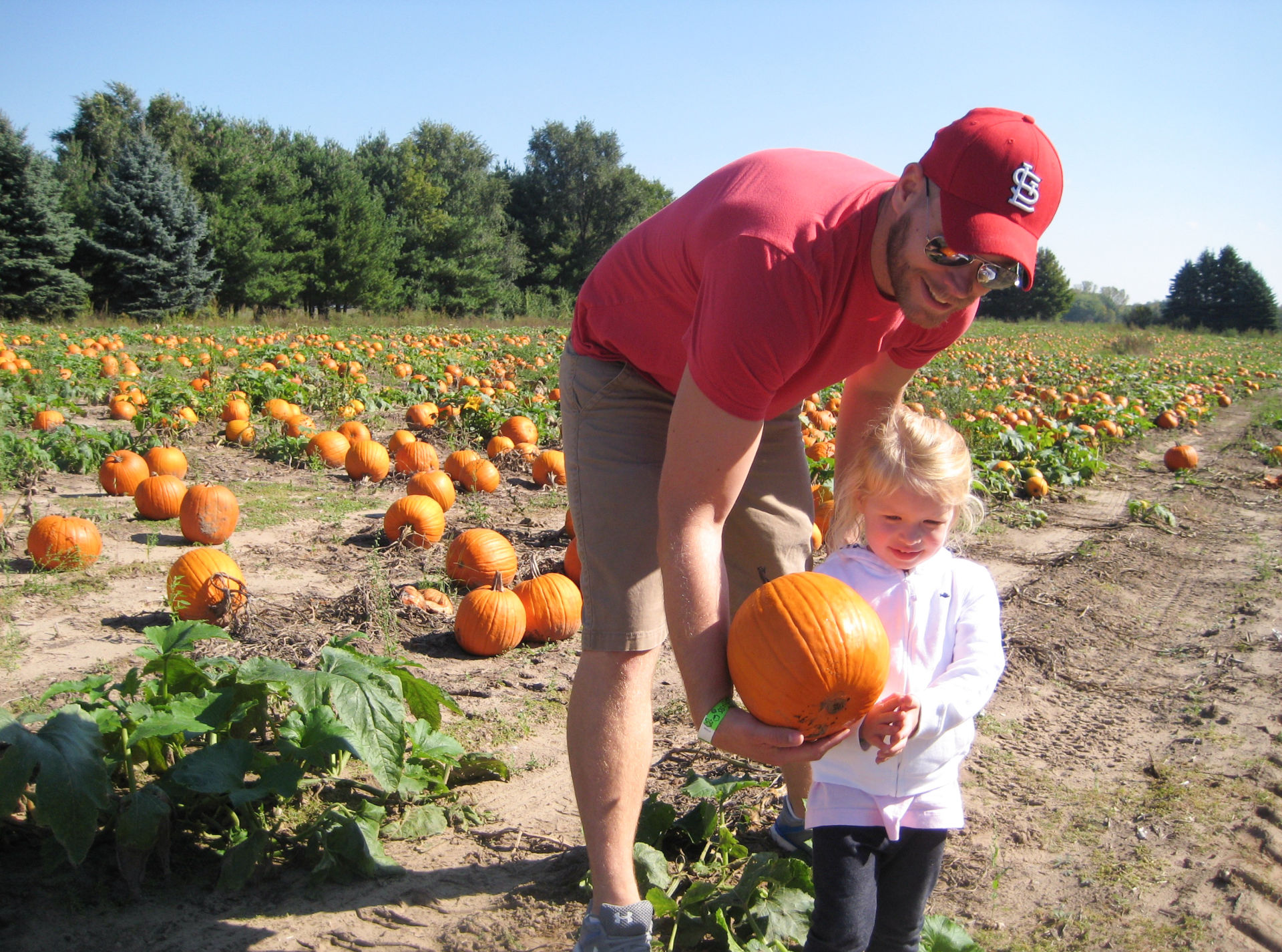 Kevin Coppinger took his nearly 3-year-old daughter, Mae, to choose a pumpkin at Waldoch Farm. The farm added a corn maze about five years ago. Owner Doug Joyer says adding such attractions has allowed him to live solely off income from the farm.