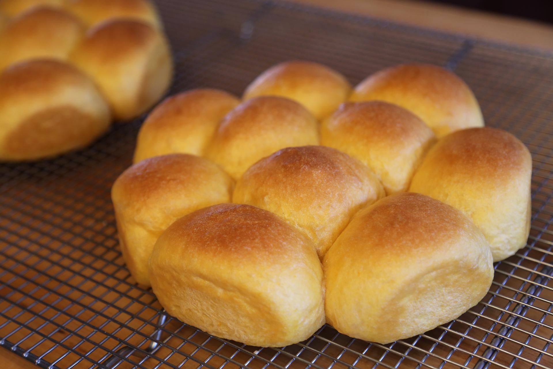 Homemade Thanksgiving: Soft and Buttery Sweet Potato Dinner Rolls ...