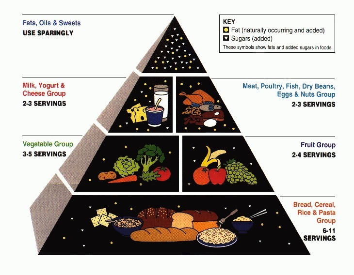 1992 Food Pyramid: Carbs were the base of this pyramid, sending the message to eat all you want.