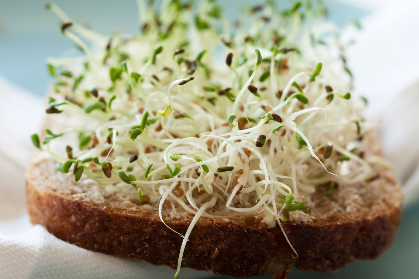 Should Sprouts Come With A Warning Label?