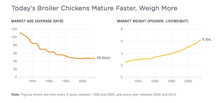 Source: National Chicken Council