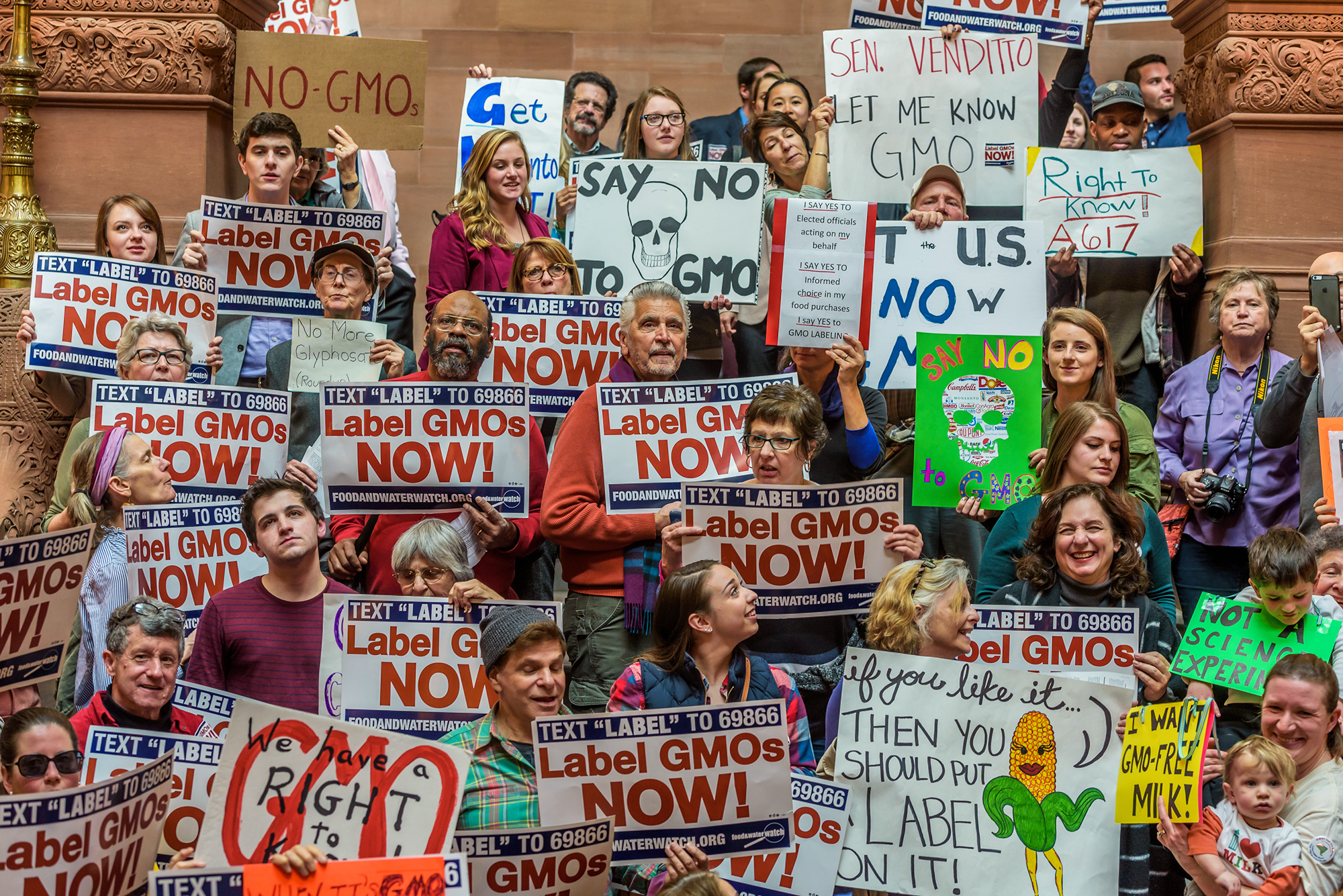 Protesters gathered at the New York state Capitol in Albany earlier this month to lobby their legislators to make GMO labels on foods mandatory in the state.