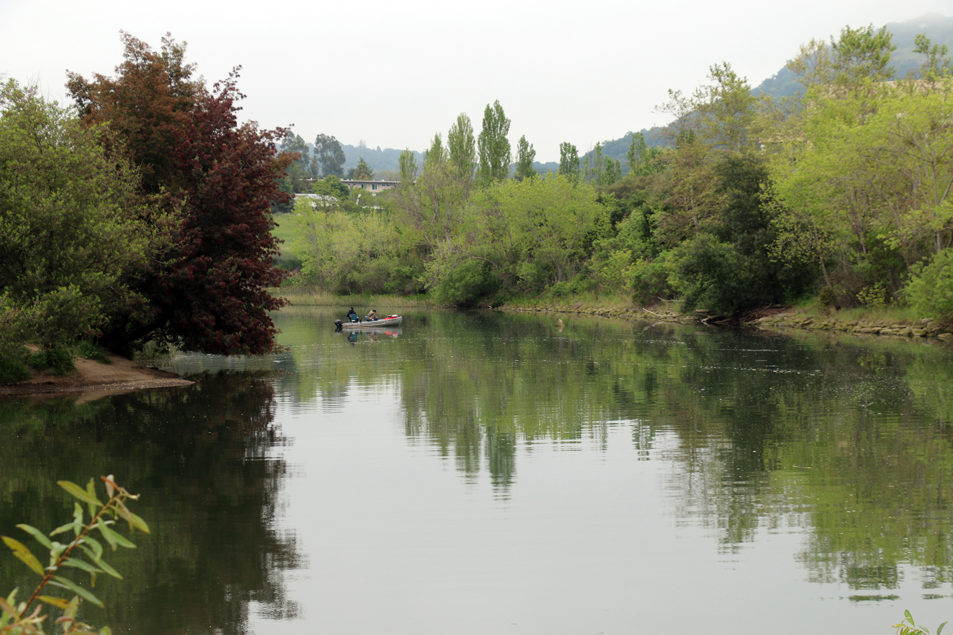 Fishing on the Napa River.