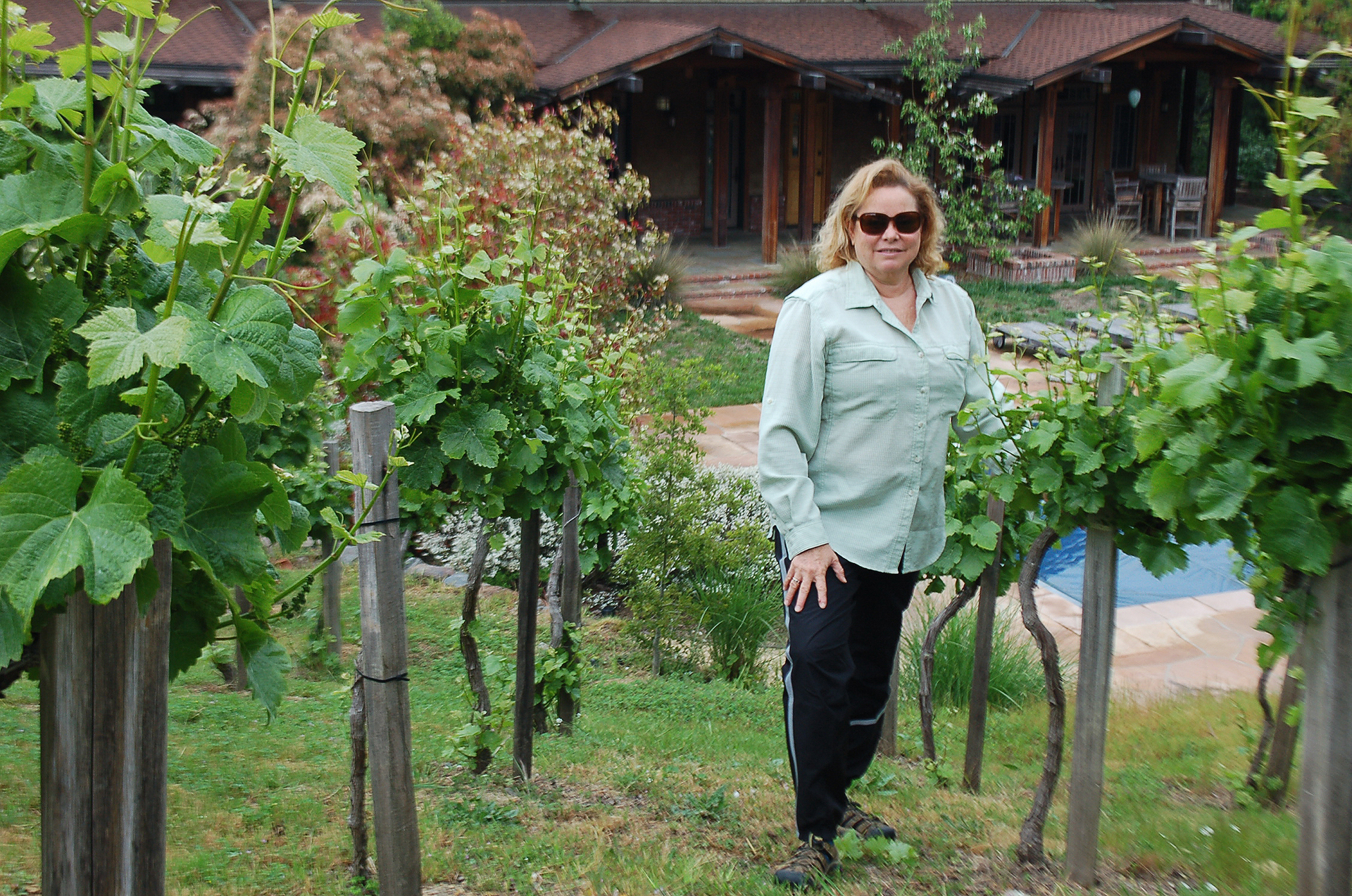 Vineyard manager/winemaker Nancy Freire specified and planted this pinot noir vineyard in a cool spot in Portola Valley, where the vines surround a large estate and pool.
