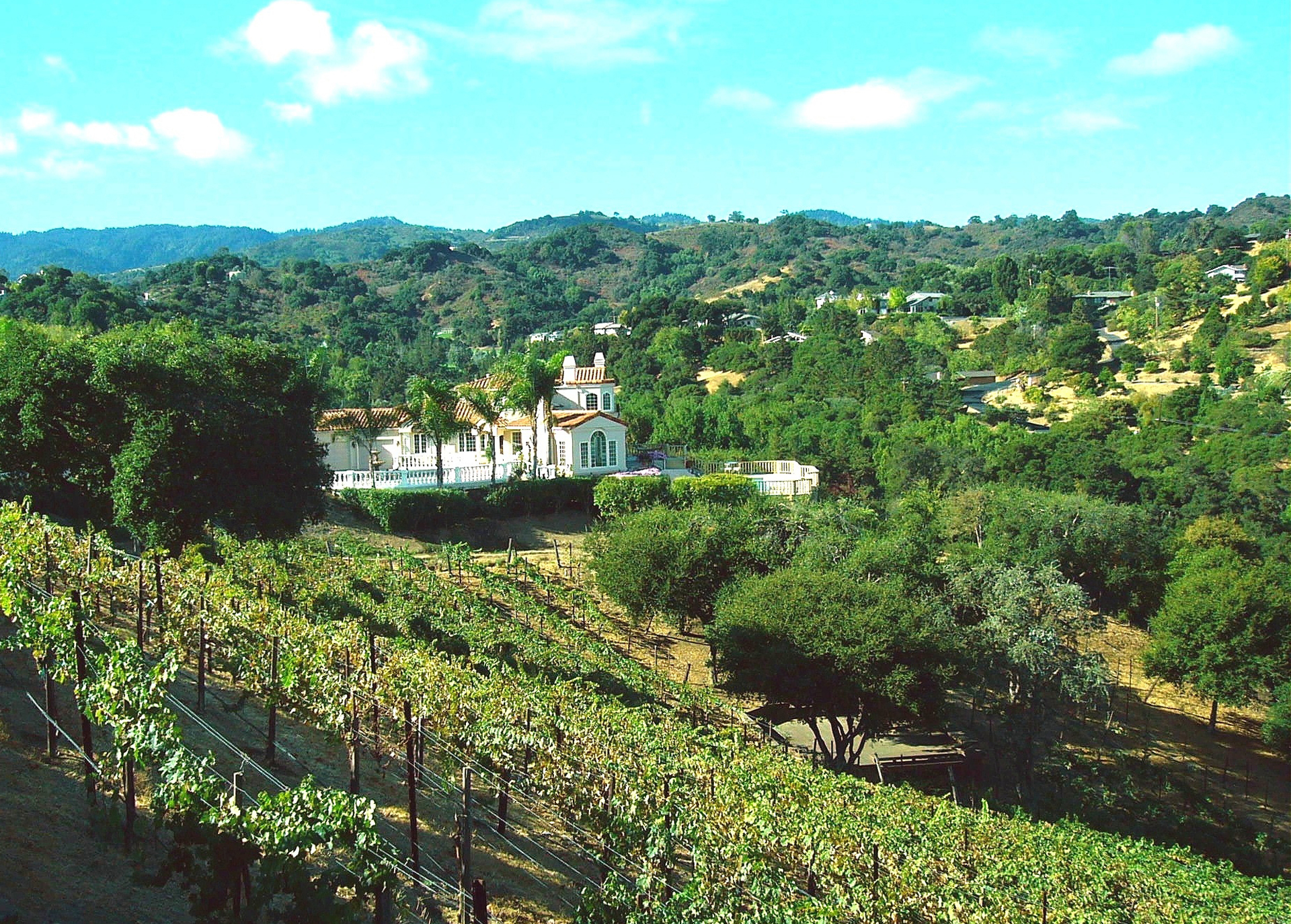Home vineyards