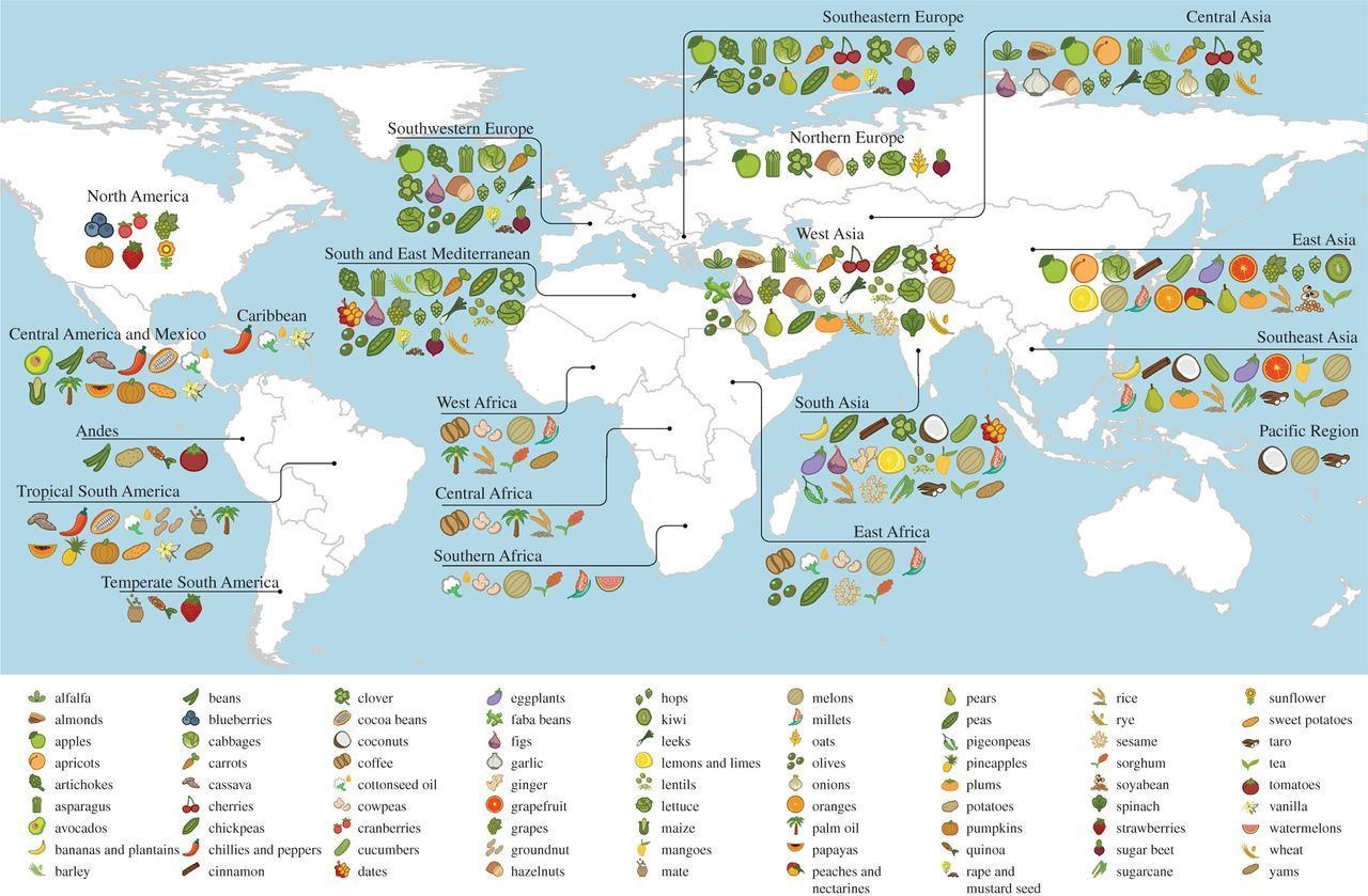 A Map Where Your Food Originated May Surprise You