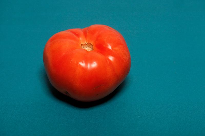 Florida tomato
